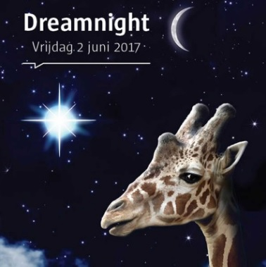 dreamnight at the zoo